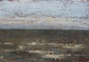 Джеймс Энсор. Морской пейзаж (1880)